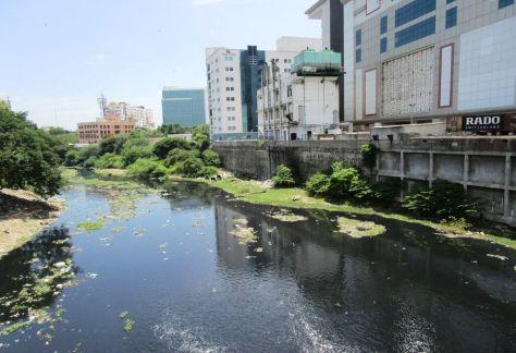 The Cooum River; Photo Courtesy Vijay Senthil.